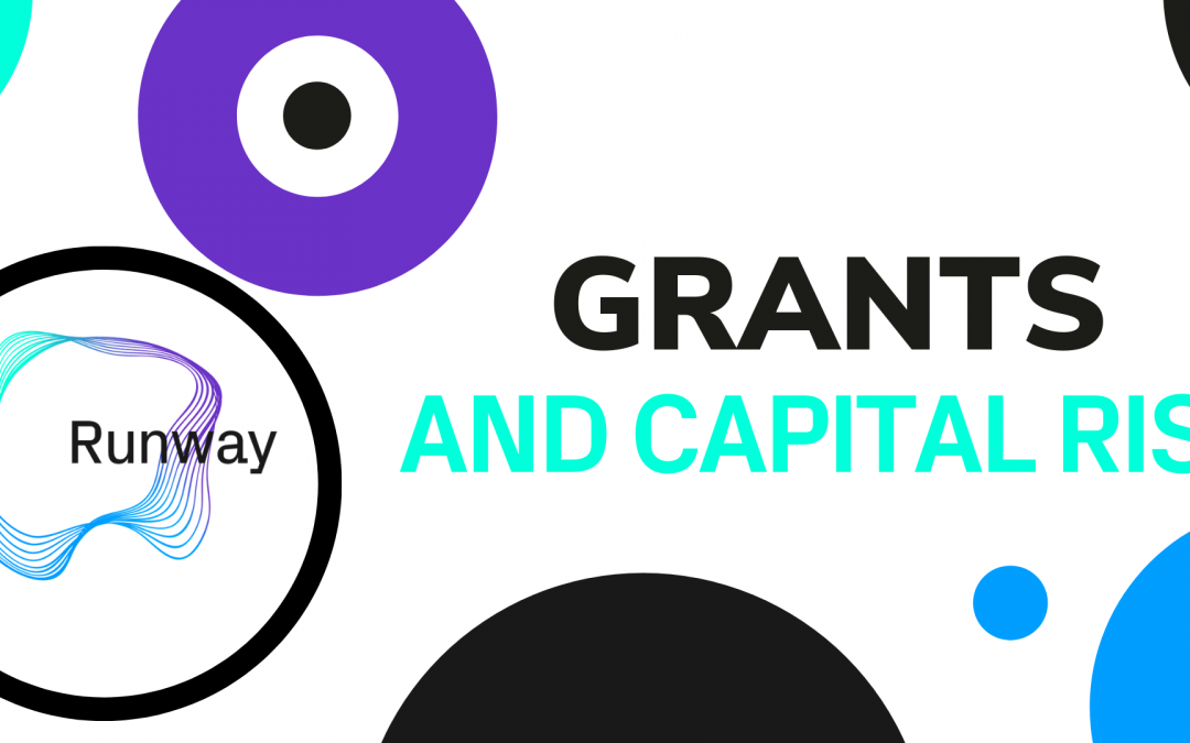 Grants and Capital Raise Masterclass